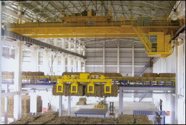 Pulping and Paper Making Industry Cranes